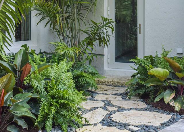 walkway to door with plants on left and right