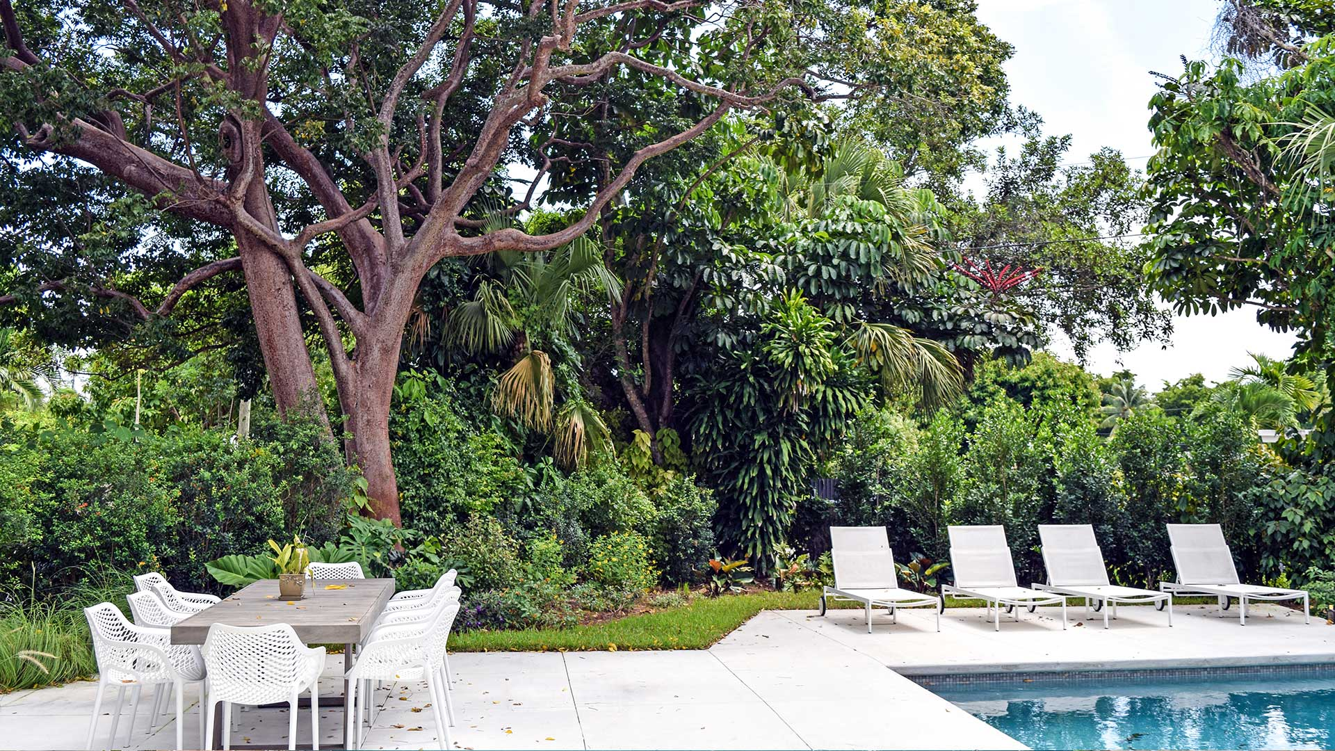 pool with lounge chair and a dining area in front of a big tree and plants