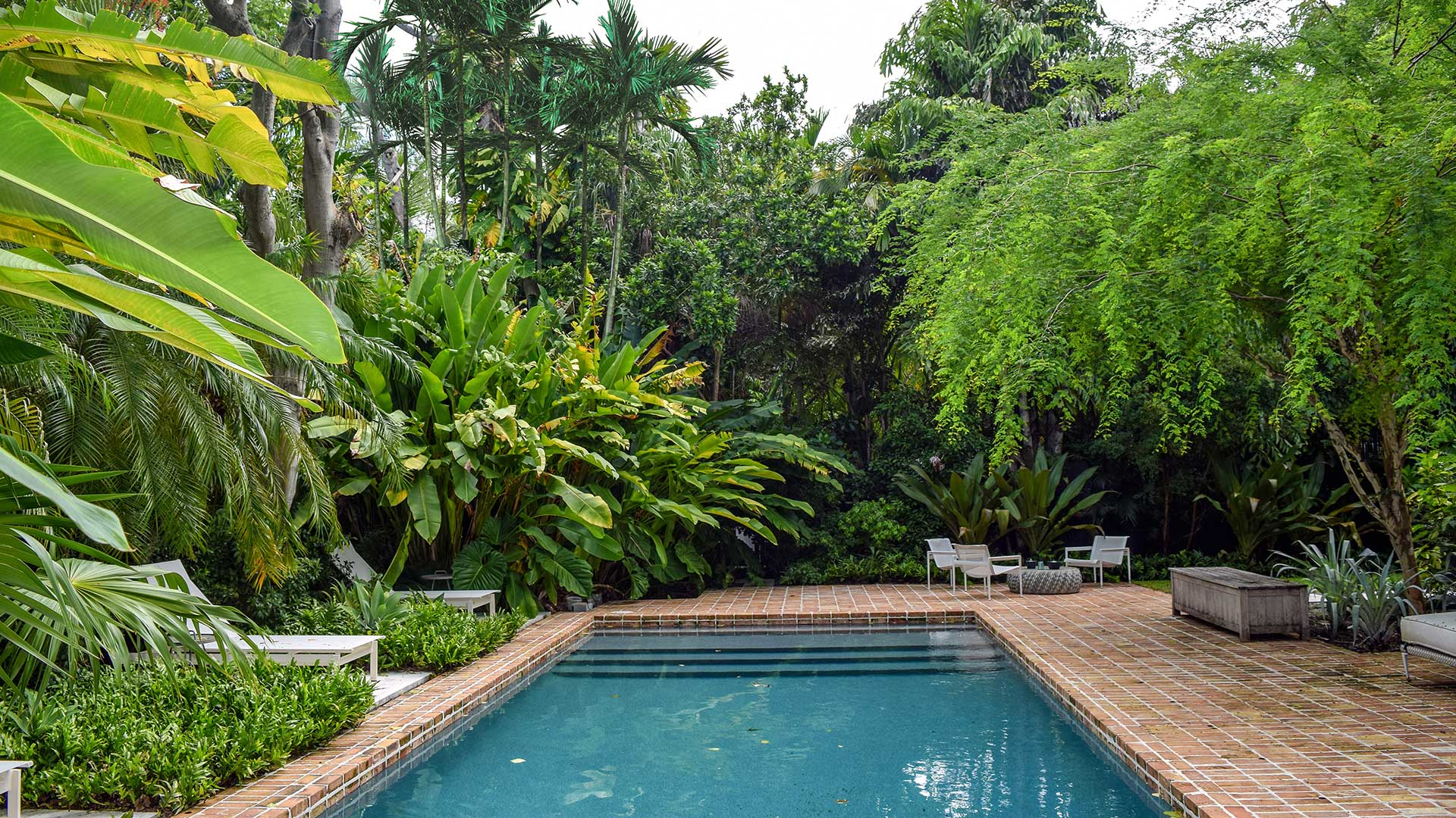pool in yard with trees surrounding