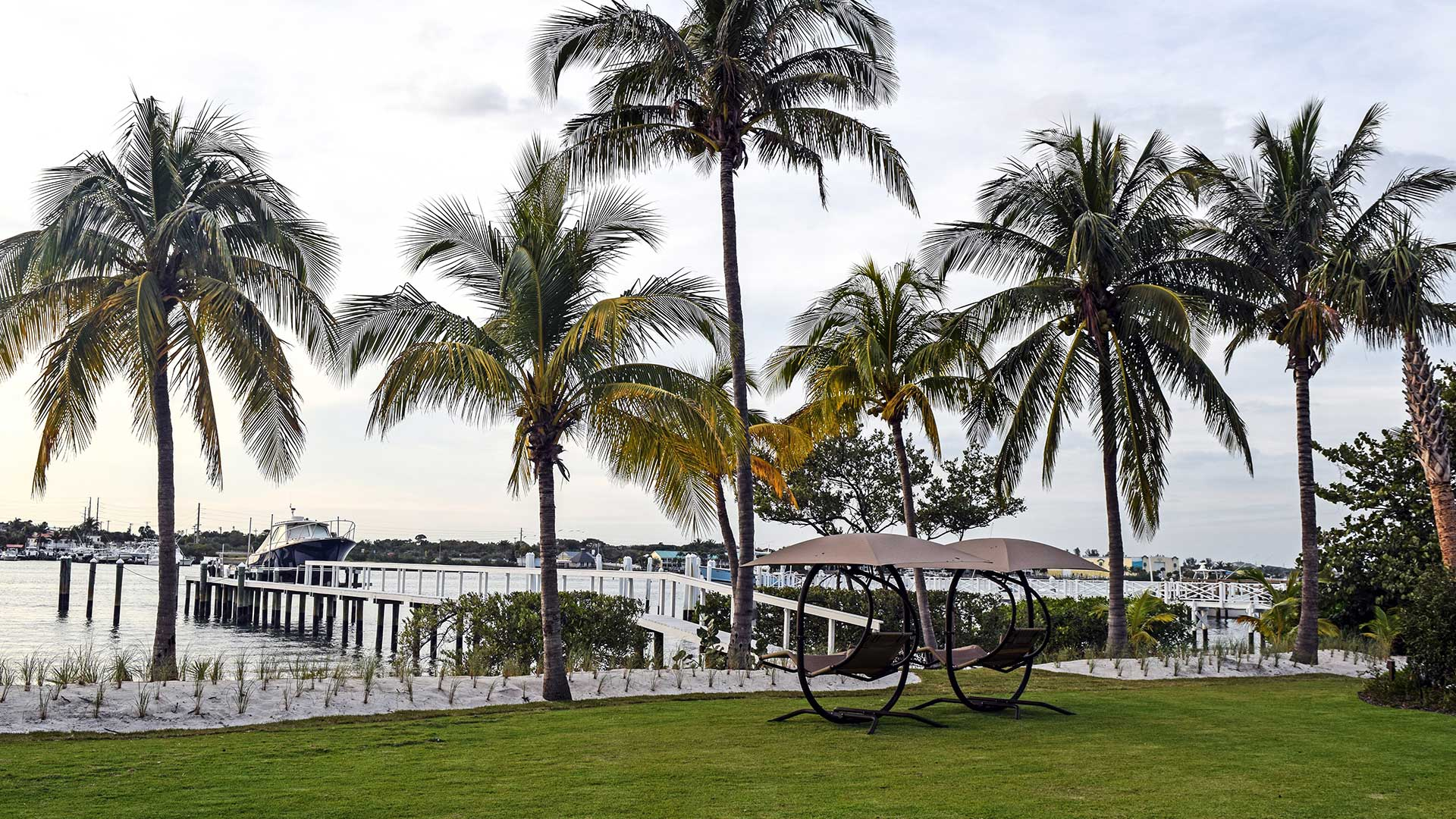 Lawn overlooking the water with palmtrees